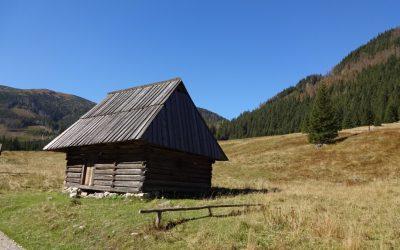 Tatry – Dolina Chochołowska