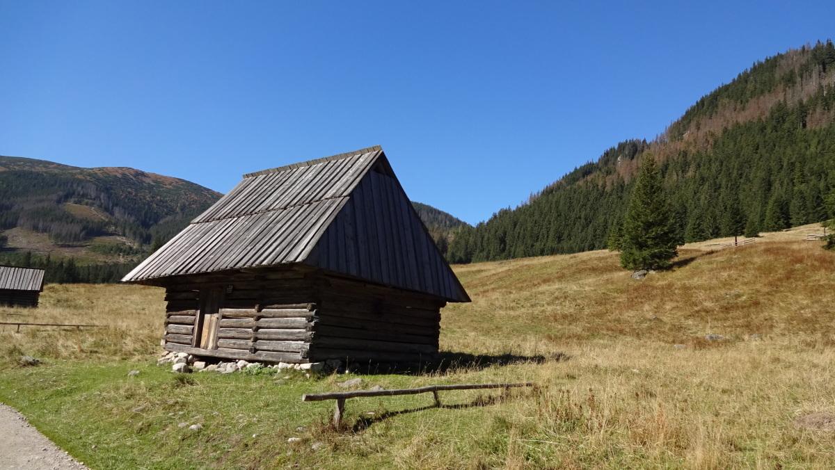 Tatry - Dolina Chochołowska Relacje