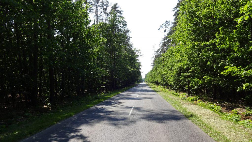 Stawy Milickie - Rowerowo Ciekawe miejsca Polska Rower